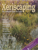 Xeriscaping – The Complete How-To Guide